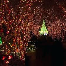 tree lighting ideas. Outdoor Tree Lighting Ideas Wrapping Trees With Lights Light Wrapped Target .