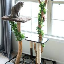 diy kitty condo a photo of cat in tree made with real branches from creative