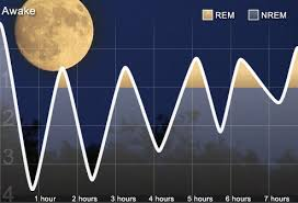 Normal Sleep Pattern Beauteous Sleep Disorders Pictures REM NREM Sleep Cycle Graphs Keeping A