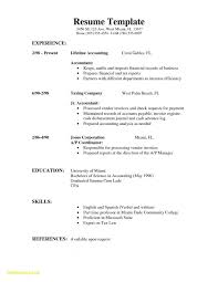 Resume Resume Formats Chronological Example Styles Examples Cool Resume Layout 2017
