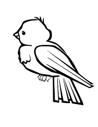 Bird Coloring Sheet Baby Bird Printable Coloring Pages Free As Angry