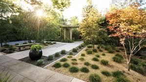 landscape free landscaping without grass sunset magazine