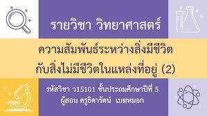 Bloggang.com : pp-review-series-by-pae - DLTV-P.5 วิชาวิทยาศาสตร์ ป.5  15/06/63 เฉลยใบงาน