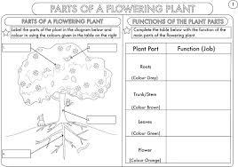 kindergarten science worksheets pdf – pinkjamsdc.com