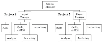 Project Organization Chart Gorgeous Small Business Organizational Structure Examples Project Based