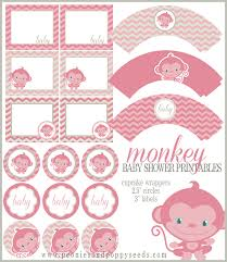 Baby Girl Caucasian Personalized Sticker Labels  Baby Girl Baby Shower Tags And Labels