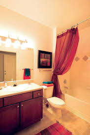 Bathroom College Apartment Decorating Ideas Bedroom