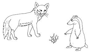 Animali Della Giungla Az Colorare