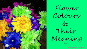 meaning behind each colour