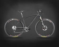 All New Solitude Carbon Hardtail 29er Race Bike Fox Fork And