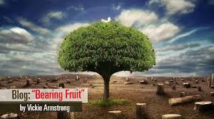 Spiritual Rules Of Engagment U2013 Bearing Fruit  Vericast NetworkTree Bearing Fruit