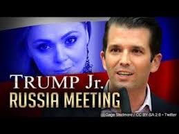 Image result for jail trump jr
