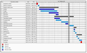 65 Systematic Gantt Chart Structure