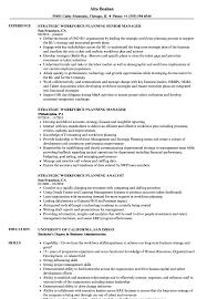 Strategic Workforce Planning Resume Samples Velvet Jobs