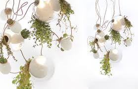 omer arbel office designrulz 14. Beautiful Designrulz PLANT LIFE For Omer Arbel Office Designrulz 14 T