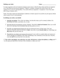 habitat and niche activity sheet answers habitat vs niche group activity