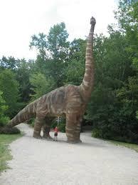 brachiosaurus size life size brachiosaurus picture of the dinosaur place at natures