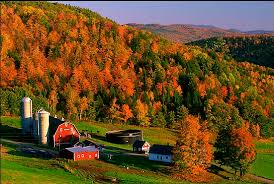 Image result for photos of autumn in new england