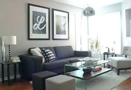 what color rug goes with a grey couch what color rug with grey couch what color