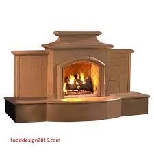 vented gas fireplace insert fresh wood burning outdoor fireplace unique p42 outdoor vent free gas