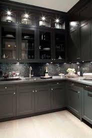 dark kitchen cabinets with glass doors quicua regard to black cabinet design 4