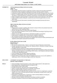 Bank Operations Manager Resume Samples Velvet Jobs