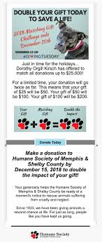 humane society of memphis shelby county fundraising email