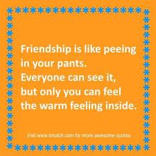 Short Funny Friendship Quotes Amazing Short Funny Friendship Quotes Sayings Only For Best Friends