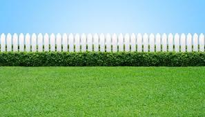 Grass Cartoon Is The Grass Truly Greener Apple Pest Control Bobs Blog Is The Grass Truly Greener