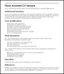 Sample Excellent Resume Resume Template Directory