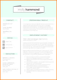5 Cv Format Professional Theorynpractice