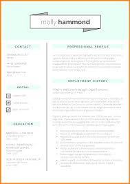 Cv Format It Professional 5 Cv Format Professional Theorynpractice