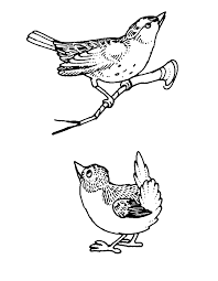 Small Picture Birds coloring pages for kids
