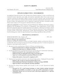 Resume For Non Profit Job Non Profit Job Resume Sample Sidemcicek 8