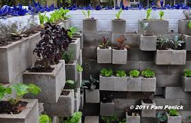 cinder block garden wall. Cinderblock Wall Vegetable Garden Wows At Big Red Sun Cinder Block