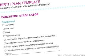 Simple Birth Plan Examples Birth Plan Template Large Size Of Awesome Stock Visual