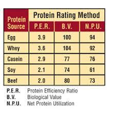 Eggfit 100 Egg White Protein Provides 25g Of High Quality
