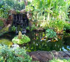 botanical garden adds joy to residents of united church of christ s arcadia chhsm