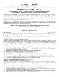Resume Best Practice Senior Operating And Finance Executive Allowed