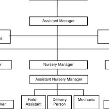 Line And Staff Organization Structure Download Scientific