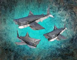 great white sharks designed by nguyen ngoc vu folded fr flickr by eyalr great white sharks by eyalr