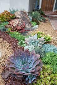 Quelles plantes pour son jardin sec  ides et conseils utiles. Green IdeasSucculents  GardenBedroom ...