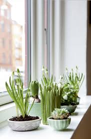 Indoor Garden 12 Creative Indoor Garden Ideas For Your Home Decor Garden Mandy