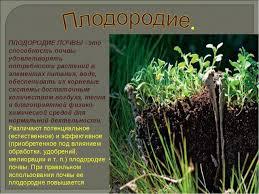 Урок класс Почвы Кыргызстана ПЛОДОРОДИЕ ПОЧВЫ это способность почвы удовлетворять потребности растений в