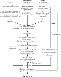 Salmon Temperature Chart Flow Chart Of The Salmon Metapopulation Simulation There