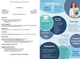 Infographic Resume Examples Resume Design Examples Spectacular Infographic Resume Examples 5