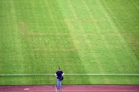 grass soccer field. Grass Soccer Field A