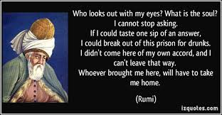 Image result for rumi what brought me here