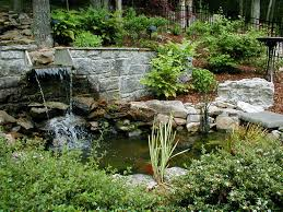 Small Picture Marvelous Idea For Backyard Pond Pictures Landscape With Unusual
