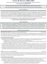Project Manager Sample Resumes It Project Manager Resume Free ...
